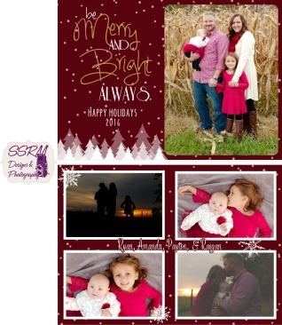 sell-family-christmas-card-2016