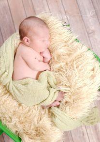 Moline Wheeler Newborn (117)