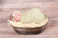 Moline Wheeler Newborn (38)