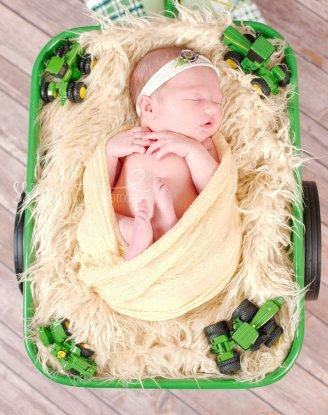 Moline Wheeler Newborn (85)